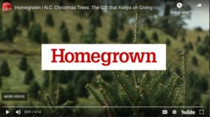 Christmas Trees with HomeGrown Title