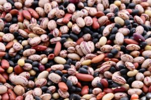 Cover photo for Cooking Dried Beans with an Electric Pressure Cooker