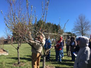 Cover photo for Brushy Mountain Tree Fruit Meeting Scheduled for March 4, 2021