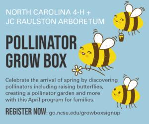 pollinator grow box
